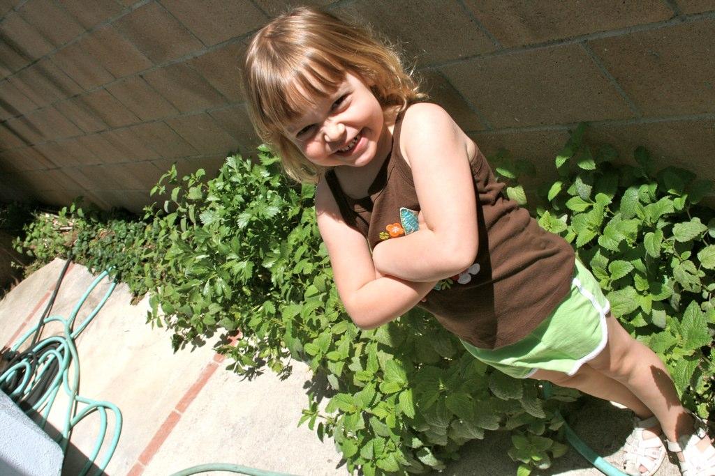 kid garden safe urban garden guide